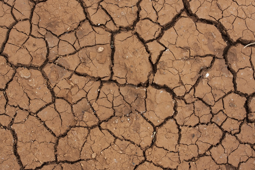 Crisis del coronavirus no detendrá el cambio climático, advierte la OMM